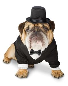 top dog 2